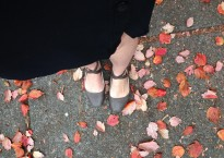 shoes in leaves